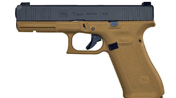 Gun Magazine Ban