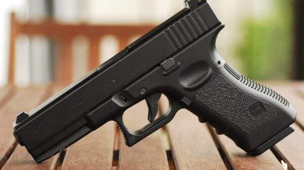 2021 Gun Sales