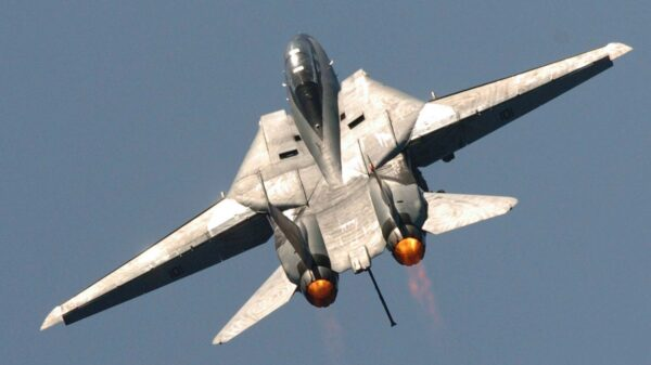 Bombcat F-14